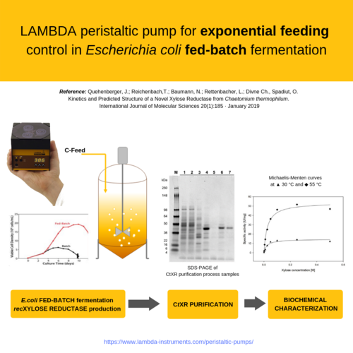 LAMBDA laboratory peristaltic pump used to control feeding in Fed-Batch fermentation