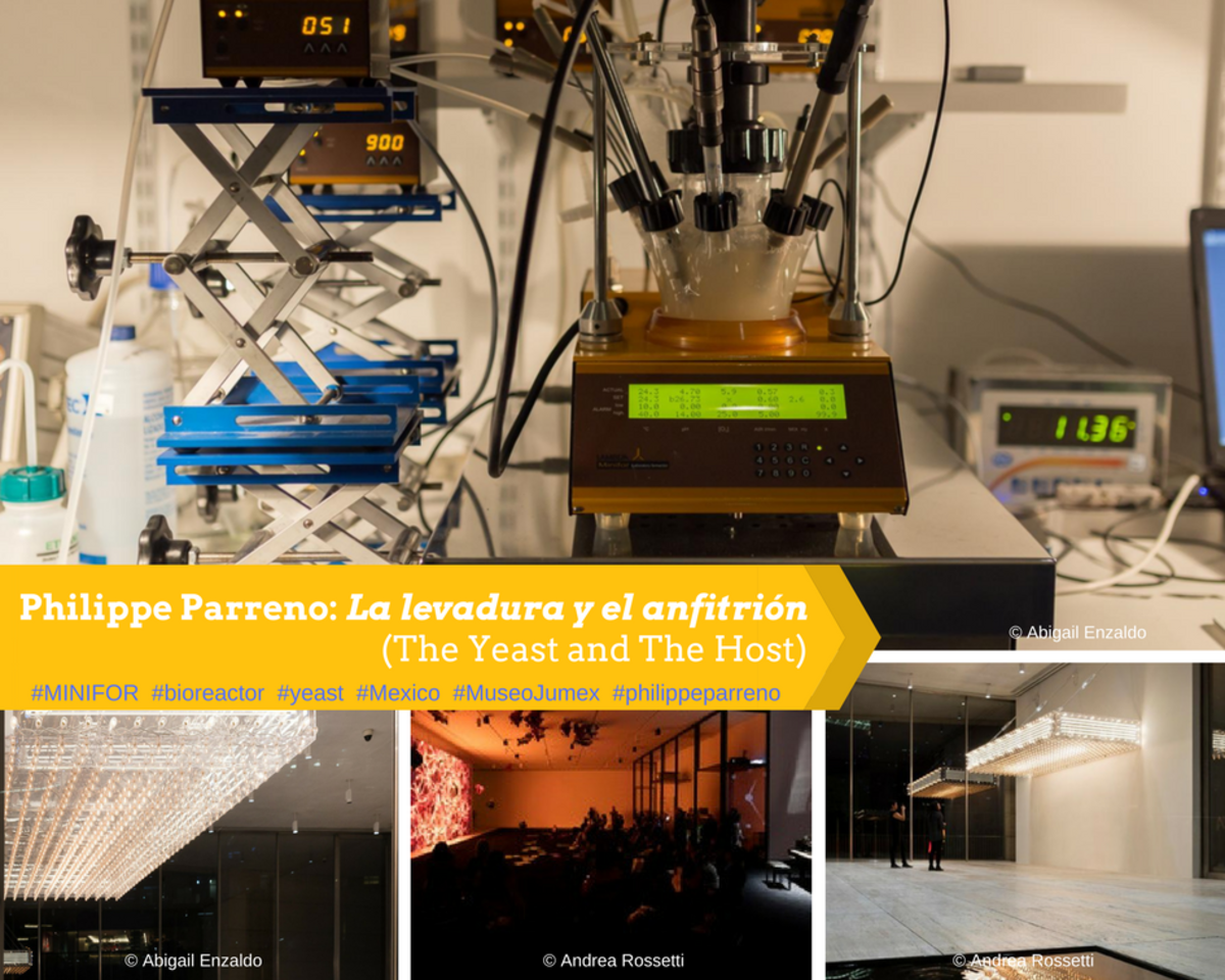 MINIFOR bioreactor in La levadura y el anfitrión (The Yeast and The Host) by French artist Philippe Parreno in Museo Jumex, Mexico