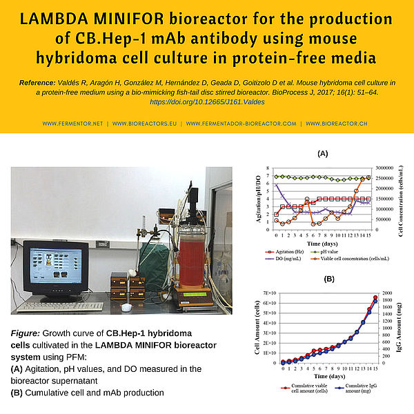 MINIFOR lab-scale bioreactor for monoclonal antibody production