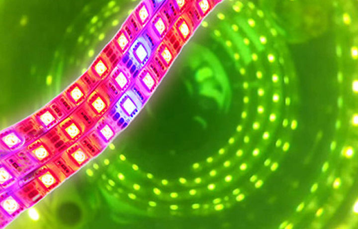 Light source for MINIFOR photobioreactor