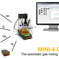 LAMBDA MINI-4-GAS automatic 4-gas station for cell culture