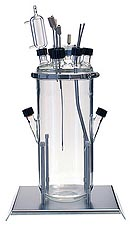 Fermentation vessel 7 liters with working volumes up to 6 liters for lab fermenters and bioreactors Lambda Minifor