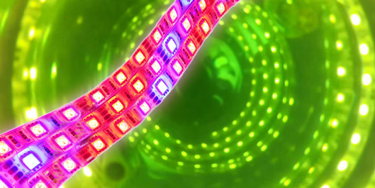LED light source for MINIFOR photobioreactor